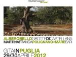Banner Puglia