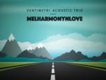 VM Trio ALBUM